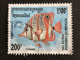 ◆◆◆ CAMBODIA  1995   Fish  , Sc #1467 ,     200r    USED  AB6117 - Cambodge