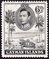 CAYMAN ISLANDS 1943 KGVI 6d Olive-Green SG122a Used - Cayman Islands