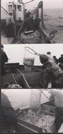 3 PHOTOS - BATEAU De PÊCHE : SARDINIER (8.8 X 12.7 Cm.) - Boats