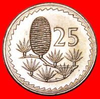 • CEDAR Of LEBANON: CYPRUS ★ 25 MILS 1974 MINT LUSTER! LOW START ★ NO RESERVE! - Cyprus