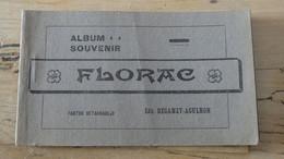 FLORAC : Carnet Album Souvenir De 12 Cartes - Florac