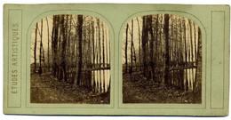 Photo Stéréoscopique Primitive - études Artistiques - Bord  étang  Serie B  N° 15  Vers  1865 ( I  193) - Stereoscopic