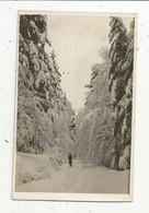 Photographie Philippe , LA BRESSE, Vosges , 88 , 135 X 85 Mm , Ski , Skieur - Places