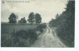 Jalhay Chemin Du Petit Bois De Surister(  Griffe Postale Verviers ) - Jalhay