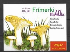 2000 MNH Iceland, Postfris - Cuadernillos/libretas