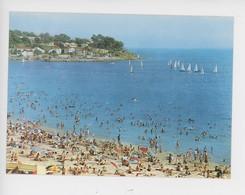 Les Sablettes, Régates Dans Le Port De Saint Elme (n°4/130) - Altri Comuni
