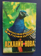 10 PCs Lot - From OLD Postcard Set - ASKANIA NOVA RESORT - ZEBRA - 199Os - Rare Postcard - Non Classificati