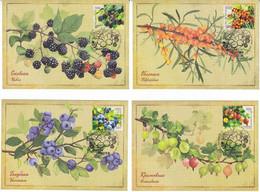 Russia Russland 2021 Mi 2978-2981 RU 2741-2744 NO EXTRA FEES Berries Flora Blueberry Sea Buckthorn Gooseberry Blackberry - Plantas Medicinales