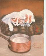 Animaux - Chats - Dessin - Illustration De J Delavau-Sauzey - Editions Decorève - 422 - Carte Neuve - CPM - Voir Scans R - Gatti