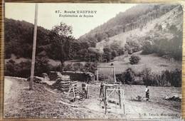 CPA 87 LR Tabacs - Route Vaufrey - Exploitation De Sapins, Bois - Saint Hippolyte