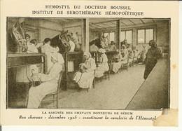 """CP De PARIS """" Hemostyl Du Docteur Roussel , La Saignée Des Chevaux Donneurs De Sérum """" - Gezondheid, Ziekenhuizen"""