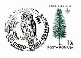 617  Chouette De L'Oural: Oblitération Temp. 1995 - Ural Owl Special Cancel On Plain Cover From Romania. Hibou - Owls