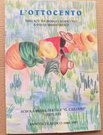 L'OTTOCENTO -TRECATE DA AGRICOLOA A INDUSTRIALE- EDIZ 1996 ( CART 70) - Storia