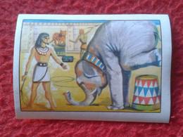 CROMO COLLECTIBLE CARD CHOCOLATE CHROME EL CIRCO CIRCUS CIRQUE..CHOCOLATES LLOVERAS EN EL ANTIGUO EGIPTO EGYPT EGYPTE... - Ohne Zuordnung