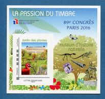 ⭐ France - Bloc Souvenir FFAP - YT N° 11 ** - Neuf Sans Charnière - 2016 ⭐ - FFAP