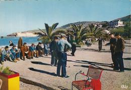BANYULS SUR MER Les Promenades Cpsm Gm - Banyuls Sur Mer