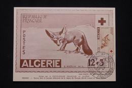 ALGÉRIE - Carte Maximum En 1957 - Croix Rouge - Fennec -  L 96092 - Covers & Documents