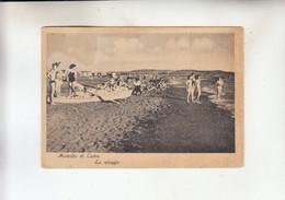 Montalto Di Castro Spiaggia - Viterbo
