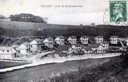 76  FECAMP   CITE DE LA BENEDICTINE - Fécamp