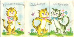 Animaux & Faune > Chats  Quelle Chance Que Nous Soyons Amis! Chats - Gatti