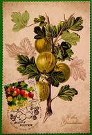 2754 2757 Series Flora Of Russia Berries 2021 Maximum Cards - Cartes Maximum