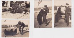 86112/4 Foto Ak Braunbär An Bord Eines Deutschen Kriegsschiff Um 1920 - Zonder Classificatie