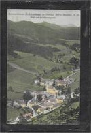 AK 0693  Schwarzau Im Gebirge Von Der Herrengrotte Aus / Verlag Ledermann Um 1925 - Neunkirchen