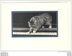 Carte De Chats ( Chat ) ( Recto Verso ) Les Chats Romantiques ( Piano ) - Gatti