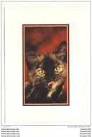 Carte De Chats ( Chat ) ( Recto Verso ) Les Chats Romantiques - Gatti