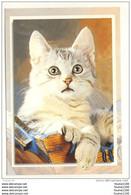 Carte De Chats ( Chat ) ( Recto Verso ) - Gatti