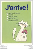Carte De Chats ( Chat ) ( Recto Verso ) ( Humoristique ) - Gatti