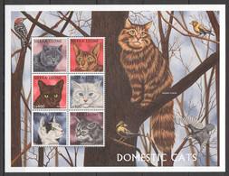 XX589 SIERRA LEONE FAUNA PETS DOMESTIC CATS 1KB MNH - Domestic Cats