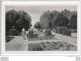 Carte Format 15 X 10,5 Cm  NATHANYA  The Victory Garden  ( Recto Verso ) - Israele