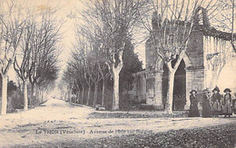 84 - LE THOR : Avenue De L'Isle Sur Sorgue - CPA - Vaucluse - Otros Municipios