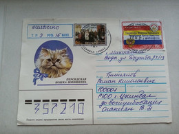 2021.South Ossetia.A Letter To Russia.Cat. ( 9 ) - Gatos Domésticos