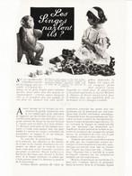 Les Singes Parlent Ils ? /  Article,  Pris D`un Magazine / 1910/1911 - Unclassified