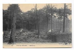 (30373-91) Foret De Senart - Bucherons - Sénart