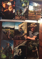 22 CPM, Collection Prestige Quercy, (Lot 46), édition CAP-Théojac, Photo JP Ferrero, Non écrites - Zonder Classificatie