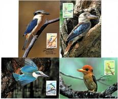 Australia 2010 Kingfishers Set Of 4 Maximum Cards - Cartes-Maximum (CM)