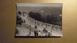Cyclisme - Photo Tour De France 1951 - 11e Etape Brive-Agen - Le Peloton Dans La Côte Du Lanzac - Cyclisme