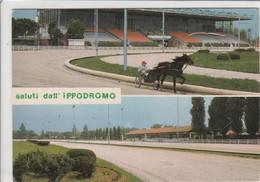 PADOVA - IPPODROMO DI PONTEDIBRENTA - SALUTI DA.......TH14 - Padova