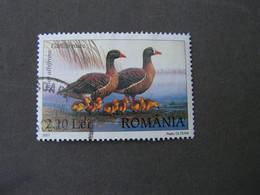 Rumänien 2007  Vogel  6216    €  1,50 - Usado