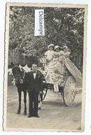 LAMALOU-les-BAINS (34) - Fête Enfantine été 1931 - Carte-photo Melle Monique Rayan Sur Son Char ! - Lamalou Les Bains