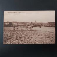 Hérinnes-lez-Pecq Panorama Agriculteur Avec Ancienne Charrue Tiré Par  Chevaux - Pecq