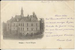 GRACAY , Vue De L' Hospice , 1903 , Carte Précurseur - Graçay