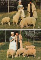 ~~ 2 CP : Les Pastouriaux Du Berry - Groupe Folklorique - Non Classés