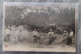 63 L' Auvergne Pittoresque La Moisson En Auvergne - Unclassified
