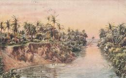 Ceylon Postcard Columbo Wellawatta Canal Oilette 1937 - Sri Lanka (Ceylon)