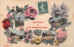 ¤¤    -    SAINT-ANDRE-des-EAUX    -  Souvenir De ..........    -   Multivues     -   ¤¤ - Otros Municipios