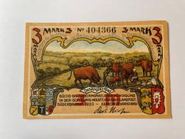 Allemagne Notgeld Suderbrarup 3 Mark - Verzamelingen